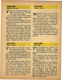 May 1971 English Chandamama magazine page 33