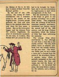 October 1975 English Chandamama magazine page 31