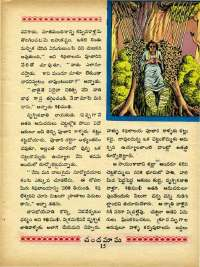 July 1970 Telugu Chandamama magazine page 29